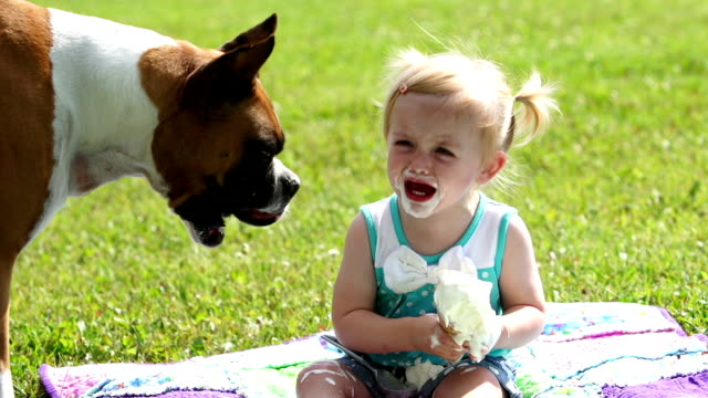 Boxer dog, little girl and ice cream cone