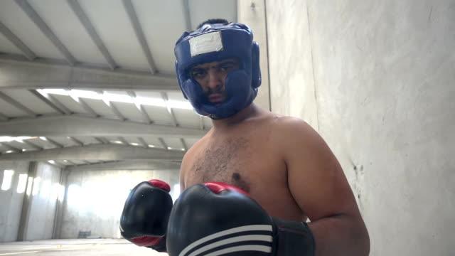vídeos y material grabado en eventos de stock de boxeador retrato - calzoncillos bóxer
