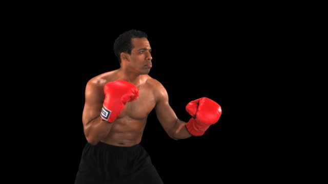 stockvideo's en b-roll-footage met boxer punching profile - this clip has an embedded alpha-channel - keyable