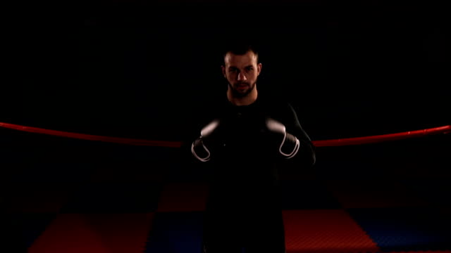 Boxer standing in fighting stance