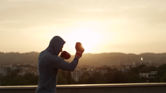 boxer - boxing stock videos & royalty-free footage
