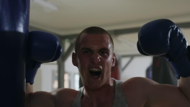 vídeos de stock, filmes e b-roll de boxer com braços levantados em comemoração - desempenho atlético