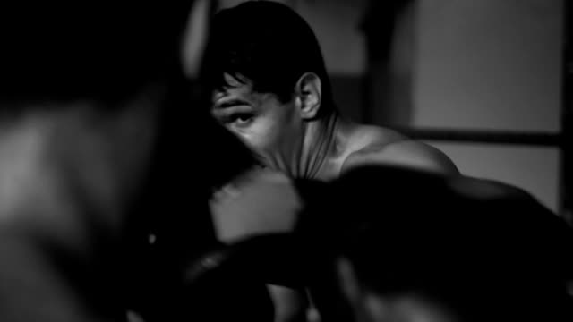 vídeos de stock e filmes b-roll de boxers practicing in ring - artes marciais