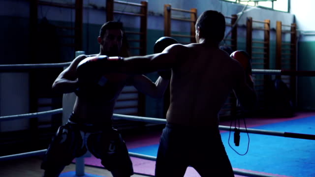 Boxers practicing in ring