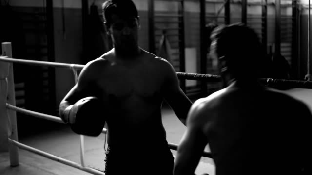 vídeos de stock, filmes e b-roll de pugilistas praticando em anel - posição de combate