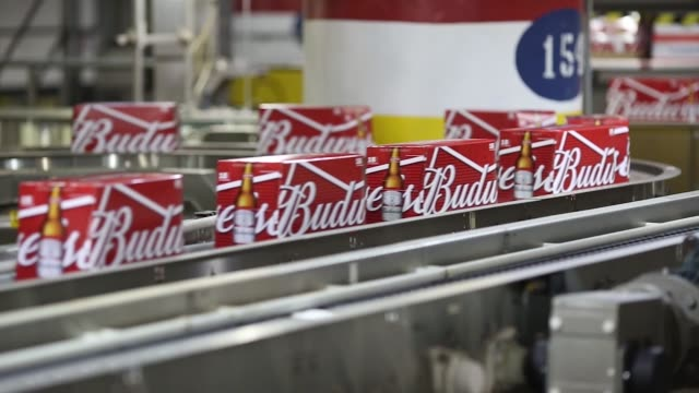 boxes of beer move along the production line at the anheuserbusch budweiser bottling facility in st louis missouri us on tuesday oct 34 2017... - anheuser busch inbev stock videos and b-roll footage