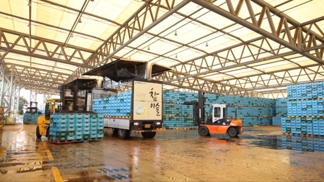 vídeos y material grabado en eventos de stock de boxes of soju (korean alcohol) being transferred at a manufacturing factory - comidas y bebidas