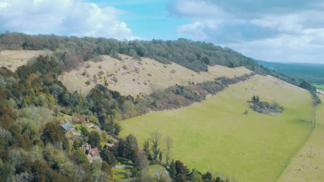 boxhill - surrey england stock videos & royalty-free footage