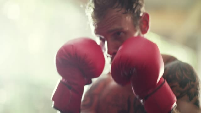 boxing gloves on and the world off - punch bag stock videos and b-roll footage