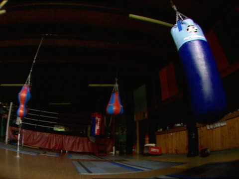 Boxing gym w/ SWINGING hanging speed heavy bags practice ring in shadow BG