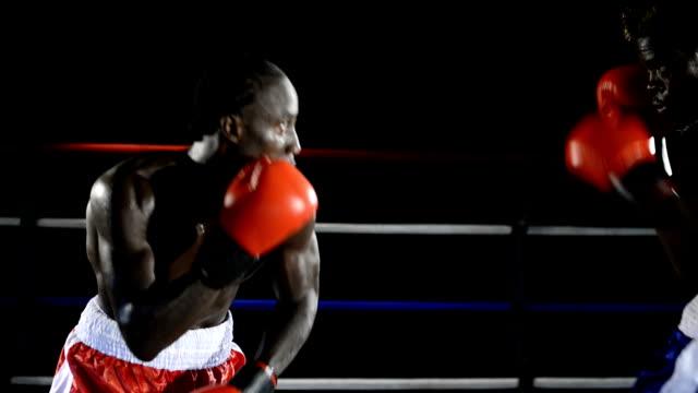 ボクシングの試合 - 殴る点の映像素材/bロール