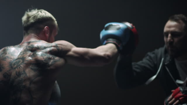 boxing training - mixed martial arts stock videos and b-roll footage
