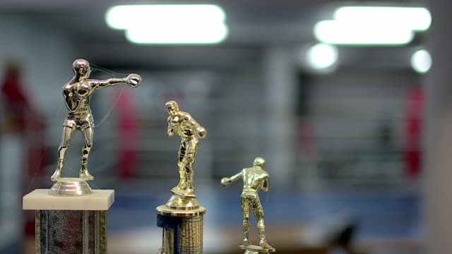 Boxing trophies with spiderweb