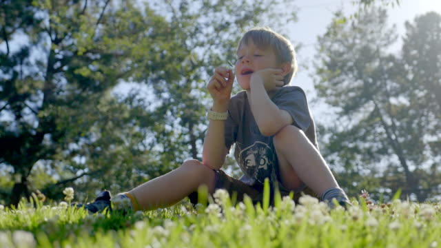 vídeos de stock e filmes b-roll de boy 7 years old is sitting on the green grass in the park and enjoys the beautiful nature. - trevo de quatro folhas