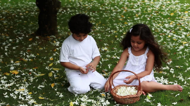 boy and a girl picking flowers in a garden  - korb stock-videos und b-roll-filmmaterial