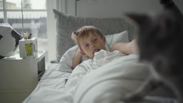 stockvideo's en b-roll-footage met boy and cat in bed - achterover leunen