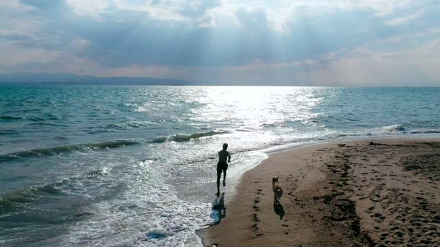 vídeos de stock, filmes e b-roll de menino e cachorro na praia - espontânea