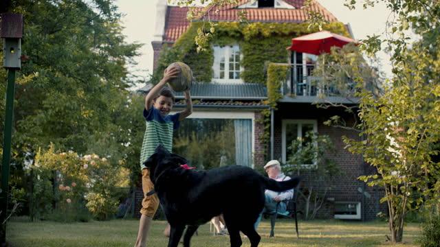 vidéos et rushes de boy and dog playing ball in grandparent's garden - activités de week end