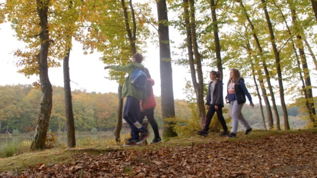 boy and girl friends carrying picnic basket in autumn woods, real time - picnic basket stock videos & royalty-free footage