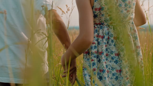 ms boy and girl holding hands,walking in rural meadow - alta sensibilità video stock e b–roll