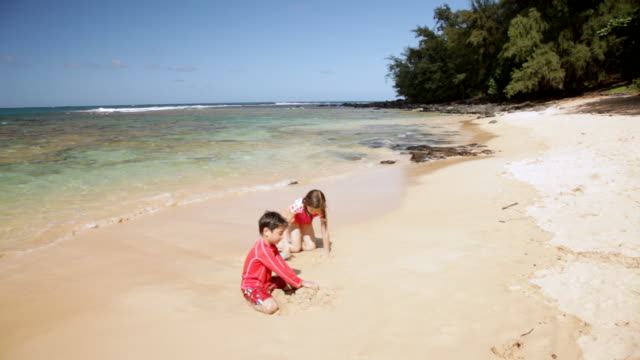 ws pan boy and girl making sand castle on beach on sunny day/ moloaa beach kauai, hawaii, united states - tropical climate stock videos & royalty-free footage
