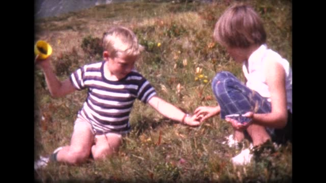 1963 boy and girl pick blueberries in swiss alps - retrostil stock-videos und b-roll-filmmaterial
