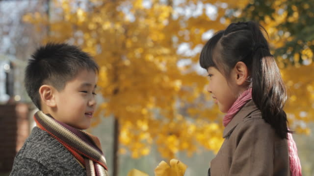 vídeos de stock, filmes e b-roll de ms boy and girl talking, holding dry leaves in park / china - 6 7 anos