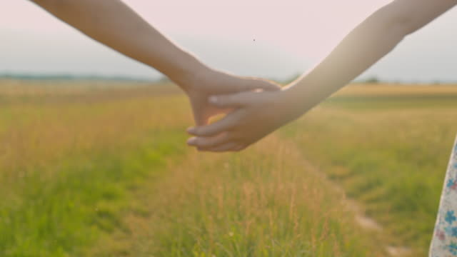 ms boy and girl walking,holding hands in sunny idyllic rural field - brother stock videos & royalty-free footage