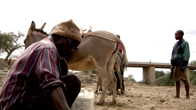 boy and girl with donkeys on the background man fills water canister from puddle in driedup river bed on july 28 2011 in road from garisa to dadaab... - bombola video stock e b–roll