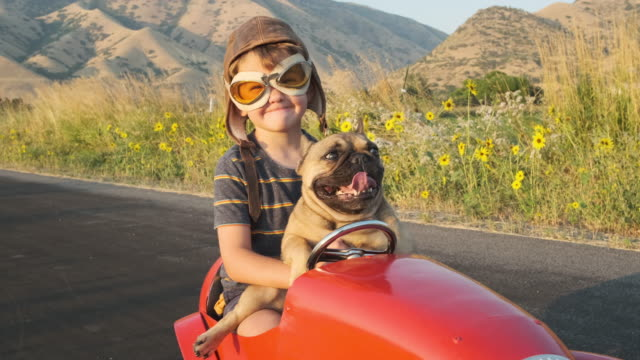 boy and his dog in toy racing car - animal themes stock videos & royalty-free footage