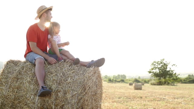 boy and little girl playing in a hay field - hay bail stock videos & royalty-free footage