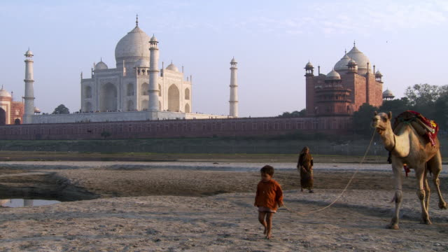 boy and women leading camel past taj mahal - taj mahal stock videos and b-roll footage
