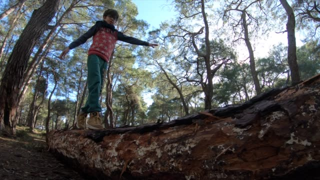 boy balancing on fallen tree to cross stream in forest - one teenage boy only stock videos & royalty-free footage