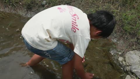 vídeos y material grabado en eventos de stock de ms zo ha boy (8-9) catching something into cupped hands in river / tokyo, japan - manos ahuecadas