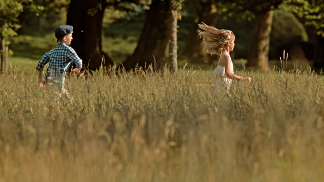 slo mo ts boy chasing a girl across a summer meadow - slovenia meadow stock videos & royalty-free footage