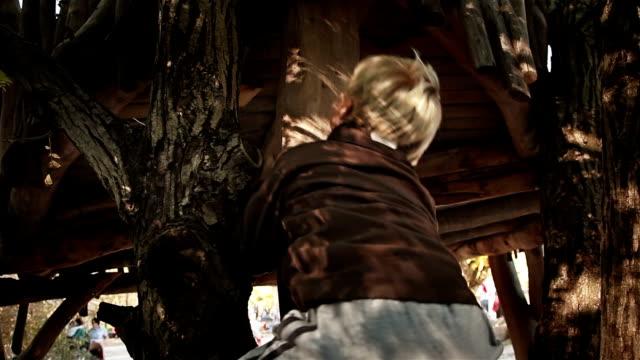 vídeos de stock, filmes e b-roll de hd: garoto escalando uma casa na árvore - treehouse