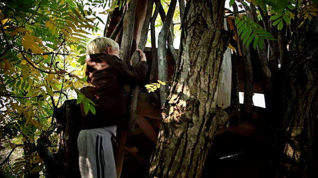 hd: boy climbing on a treehouse - treehouse stock videos & royalty-free footage