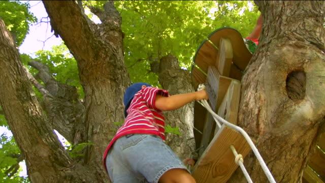 vídeos y material grabado en eventos de stock de la ms boy climbing rope ladder up tree while another boy sits on treehouse platform / sherman, ct, usa - accesorio de cabeza
