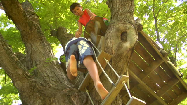 LA MS Boy climbing rope ladder up tree while another boy watches, then three boys wave from atop platform / Sherman, CT, USA