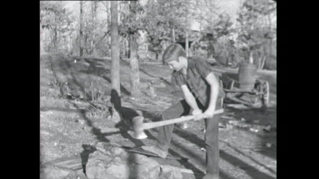 boy cuts wood with axe - 1961 stock videos & royalty-free footage