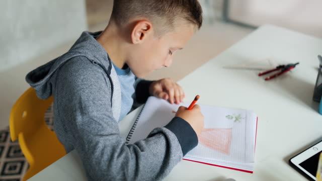boy doing his homework - diario video stock e b–roll