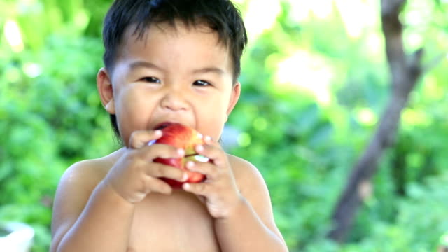 boy eating apple - apple fruit stock videos and b-roll footage