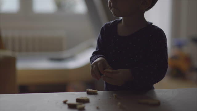 boy eating bread - crumb stock videos & royalty-free footage