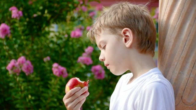 Boy eating red apple, close-up