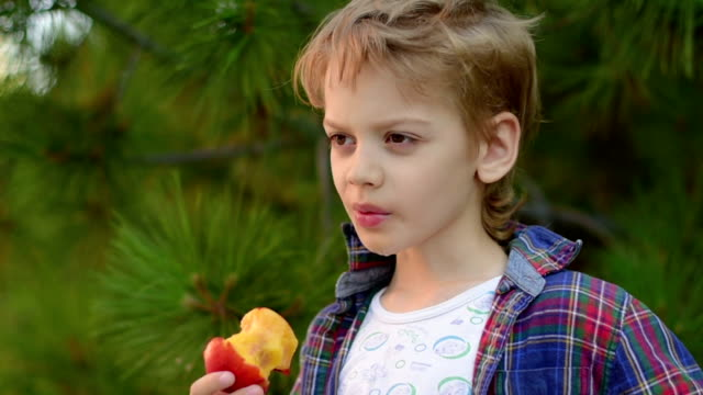 vídeos y material grabado en eventos de stock de niño un durazno mientras come en el parque - un solo niño