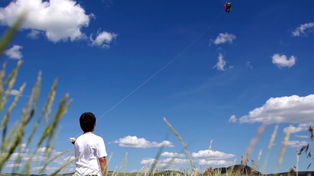 Boy Flies a Kite