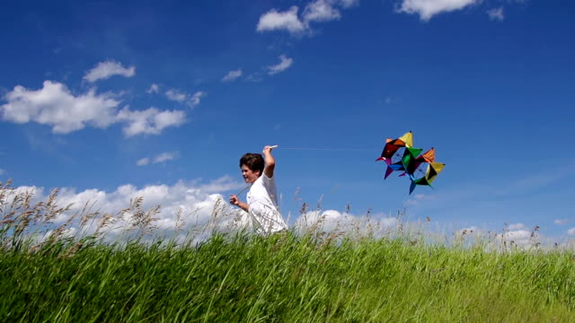 Boy Flies Kite