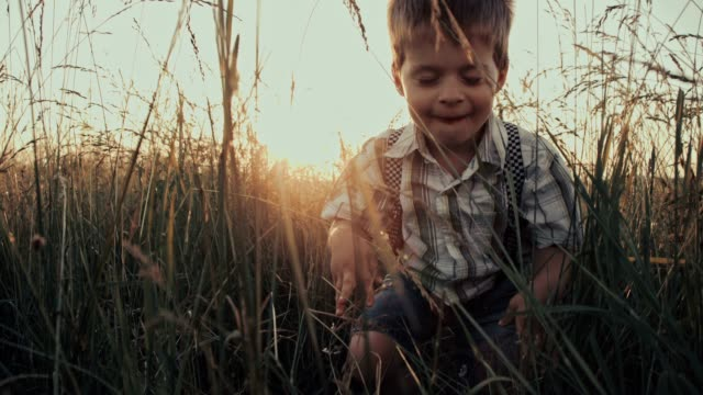 slo mo boy having fun in grass - crawling stock videos & royalty-free footage