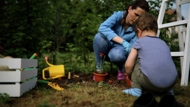 boy helps her mother in garden - gardening stock videos & royalty-free footage