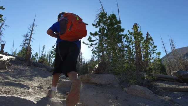 a boy hiking on a trail in the mountains. - tracking shot stock videos & royalty-free footage